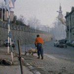 """Film """"Columba Urbica"""" Gorana Radovanovića na kanalu Filmskog centra Srbije"""